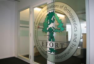 Photo_frost_EFORT_logo